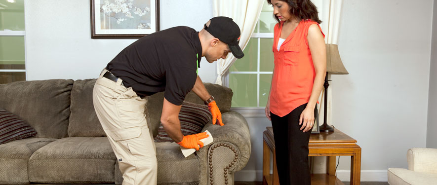 Sumter, SC carpet upholstery cleaning