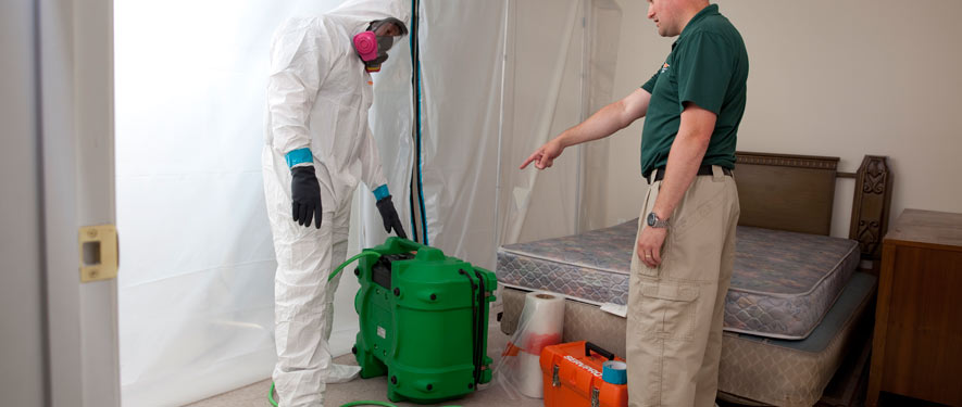 Sumter, SC mold removal process